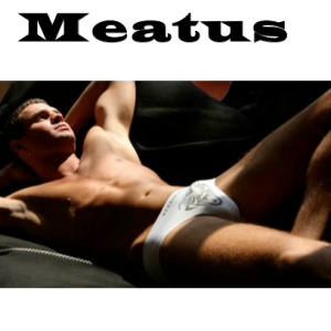 MEATUS