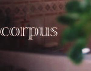 corpus4(cut)